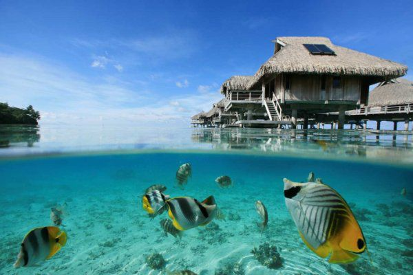 Bora Bora Lagoon Resort And SPA 2